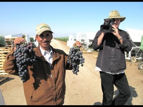 The Last Harvest: The Yemenis of the San Joaquin