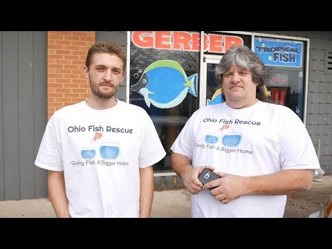 Rescuing Monster Fish with the Ohio Fish Rescue