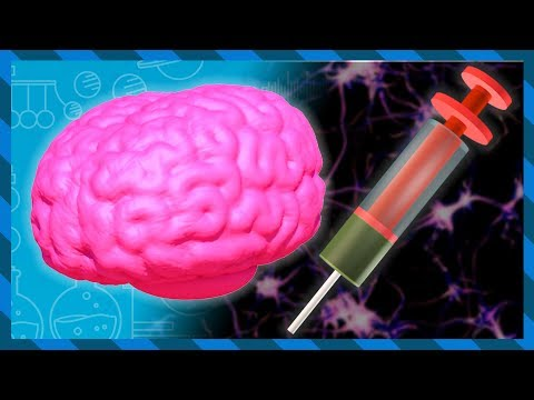What does Heroin do to your brain and body? | Earth Lab