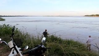 Amazing Hook Fishing in Mekong River- How to tie a hook for fishing in Kampong cham