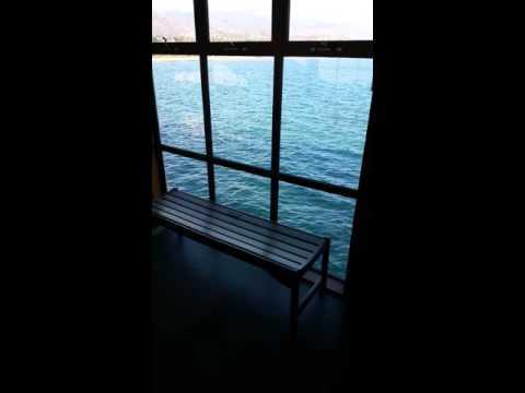 Ty Warner Sea Center 3