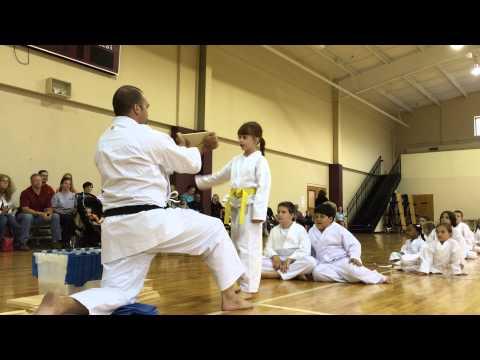Mcdonough Methodist Academy Karate Students