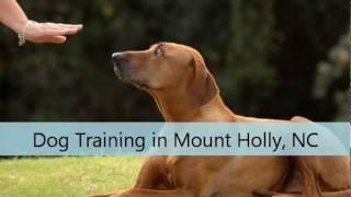 Dog Training Mount Holly Nc Canine Communications