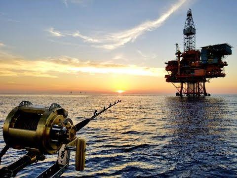 南油..釣魚篇 2018年9月 收季 尾水 ( 幸運釣友 連中2大班 )