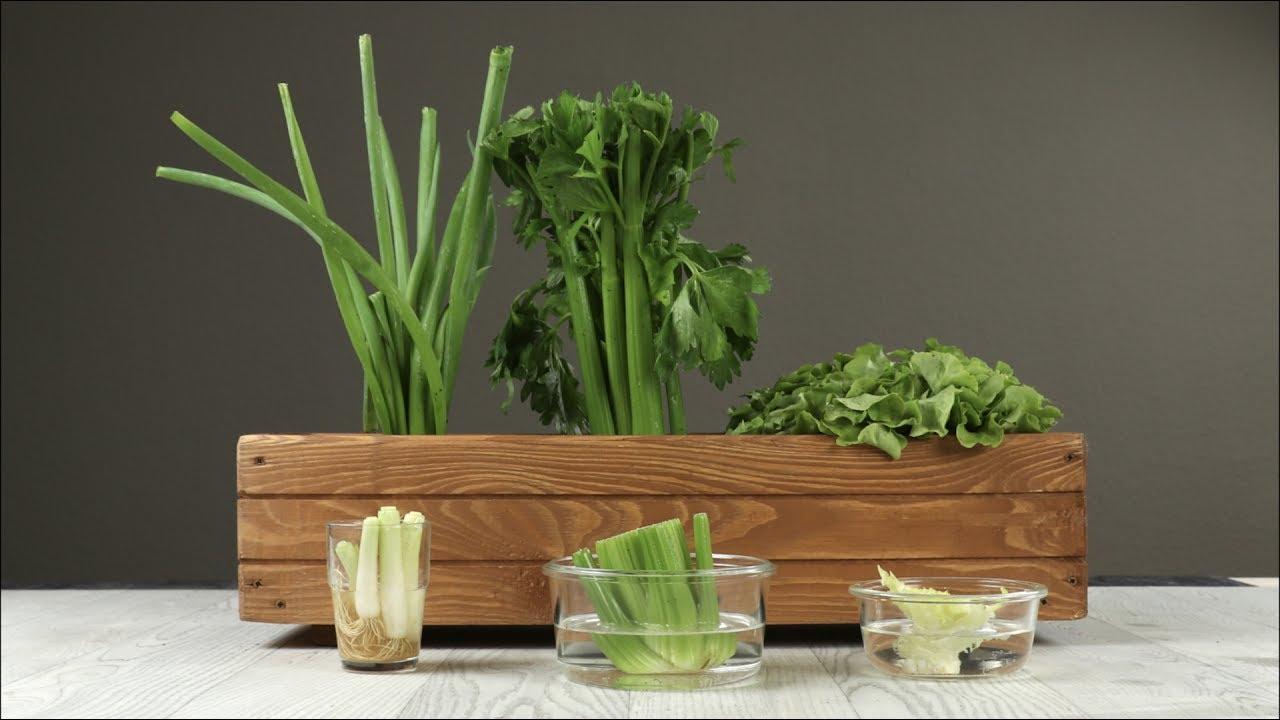 Verdure per Interni ed Esterni pomodori con Manici Vaso per Fiori Patate vasi in Tessuto Verdure Sacchetti per Piante di Patate Pannow Giardino in Tessuto