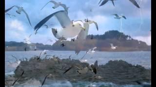 Be - Neil Diamond - Fernão Capelo Gaivota - Jonathan Livingston Seagull