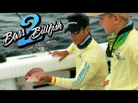 7yr. Catches Red Snapper | Bass 2 Billfish with Peter Miller