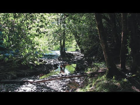 A new life in France - Creuse - Part 7 - 2017