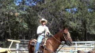 Horse Training, Team Roping and Lessons at PHA week 7-29-13