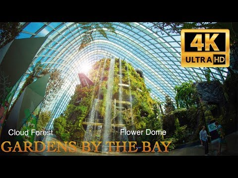 Gardens by the Bay. Flower Dome&Cloud Forest. Singapore. 4K. 2017
