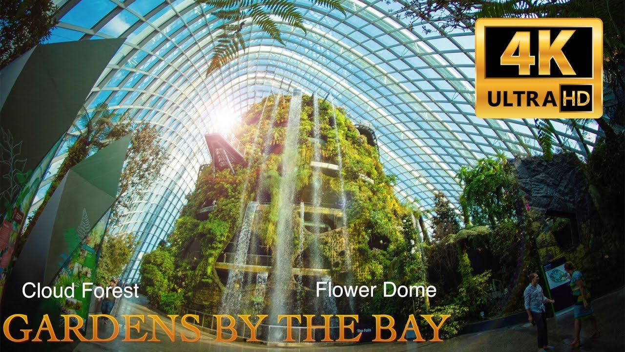 Garden By The Bay Flower gardensthe bay. flower dome&cloud forest. singapore. 4k. 2017