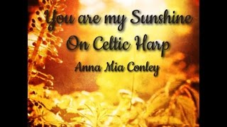 You Are My Sunshine folk song played with Celtic Harp live Louisiana state