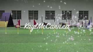 Onemind Dogs Challenge #4 - Kayl Mccann