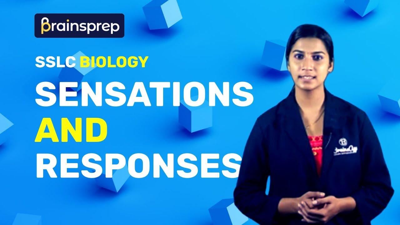 Sensation and Responses - Biology SSLC Class 10 Kerala Syllabus   BrainsApp  Learning App
