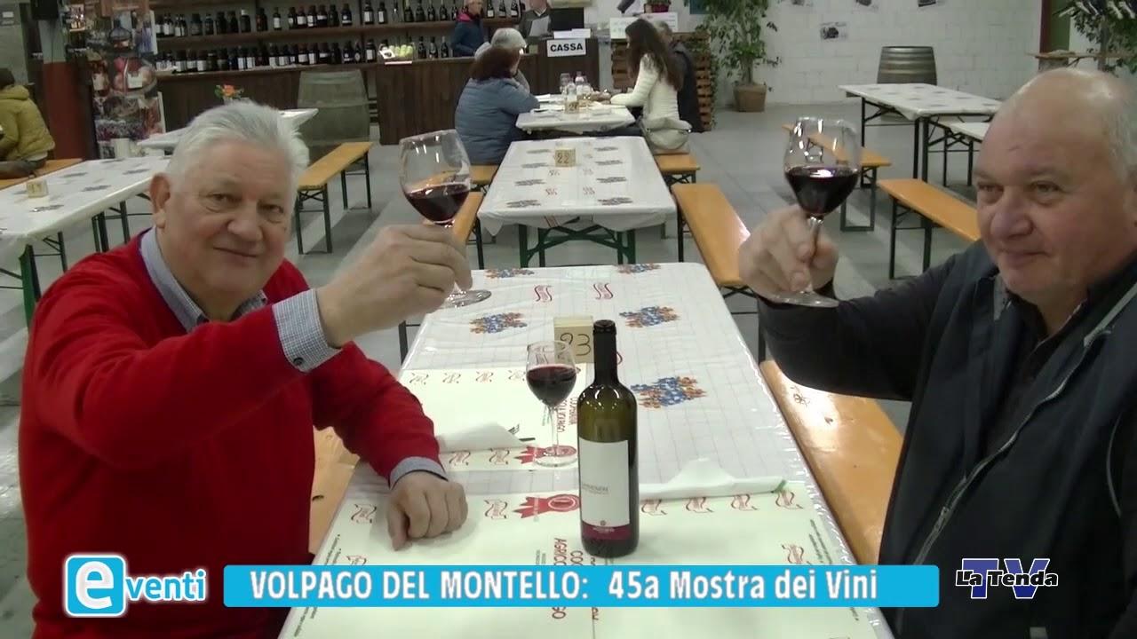EVENTI - Volpago del Montello: 45a Mostra dei vini