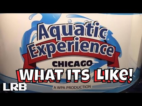 What Its Like at the Aquatic Experience Walkthrough