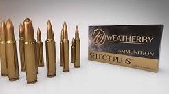 Weatherby Select & Select Plus Ammunition