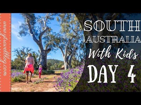 Flinders Ranges National Park | South Australia Family Road Trip