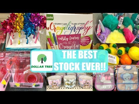 DOLLAR TREE   WHAT'S NEW !!!   THE BEST KEYCHAINS & MORE!