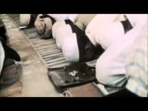 Muslim slavery black slaves in Islam and Islamic countries in recent times