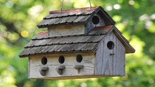30 Amazing DIY Idęas To Build a BirdHouse