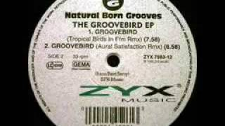 Natural Born Grooves - Groovebird