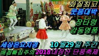 버드리 10월29일 주간 2018 내장산 단풍축제 초청 공연