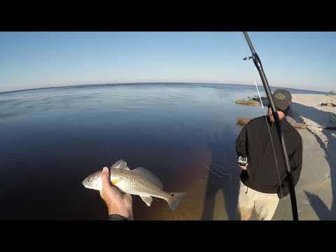 Fishing For Trout And Redfish  - Port St  Joe Florida