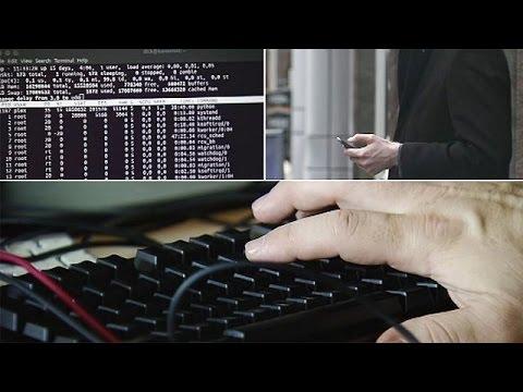 Wikileaks publishes data dump of secret CIA files