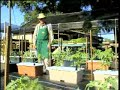 Farmer's invention helps UN fight against hunger