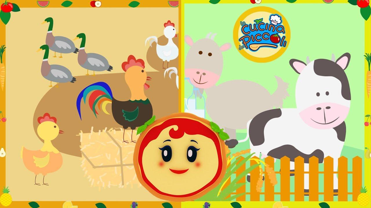 Cartoni animati per bambini margherita spiega la vita in