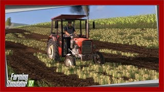 Wiosenna Orka na 2 Ursusy S11E2 | Farming Simulator 17