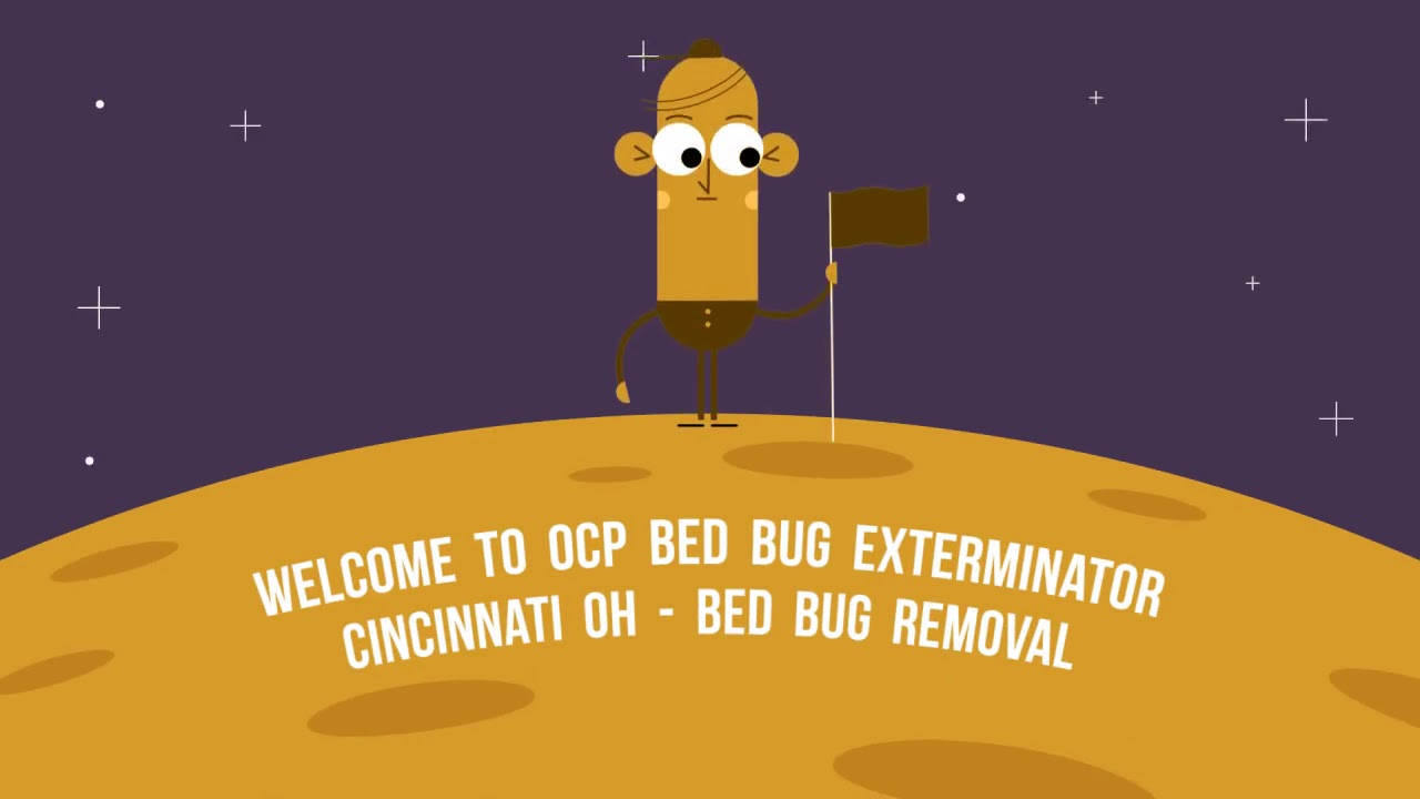 Certified OCP Bed Bug Exterminator in Cincinnati, OH