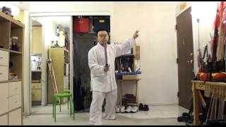 Chinese Sword Combat VS Western and Japanese Style