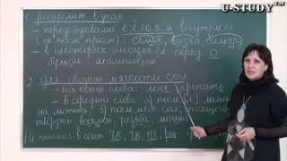 Подготовка к ЕНТ: Русский язык (Разделительный мягкий знак и для обозначение мягкости согласного)