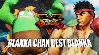 BLANKA CHAN BEST BLANKA: Blanka Online - Street Fighter 5 AE