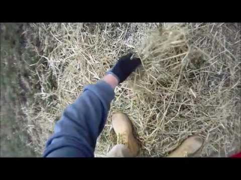 how to find a lost wedding ring with metal detector youtube