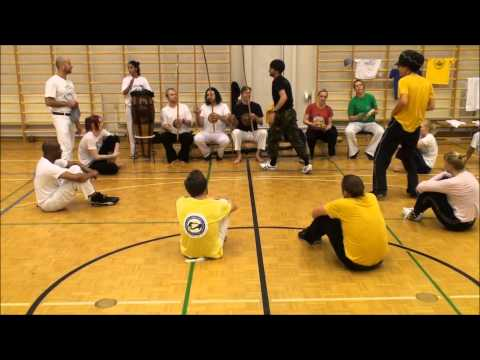 Roda at the event 25 Years of Capoeira in Finland part 6