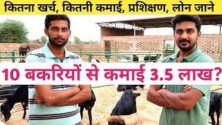 नोकरी नहीं बकरी पालन करते युवा|How to Start Goat farming in india|Bakri Palan in Hindi