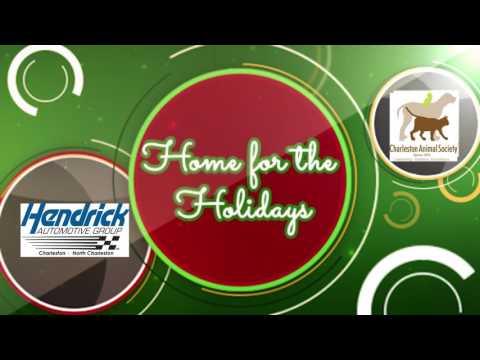 2016 Home for the Holidays 3
