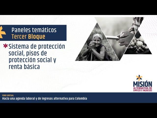 Panel Sistema de protección social, pisos de protección social y renta básica