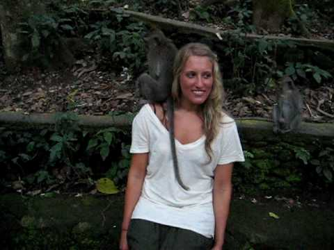 Bali Monkey Forest Funny (Monkey Pulling his Monkey on Julia)
