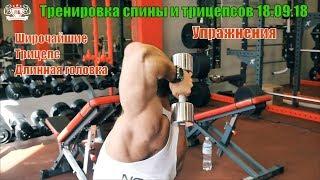 Широчайшие. Трицепс. Тренировка спины и трицепсов 18/09/18. Подготовка к осенним чемпионатам