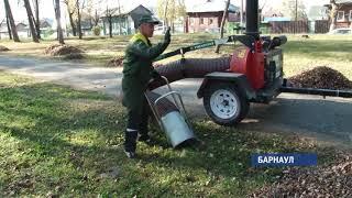 Cегодня в Барнауле прошел общегородской субботник