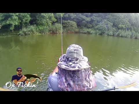Newton Lake Il. Bass Fishing With Dj Williams