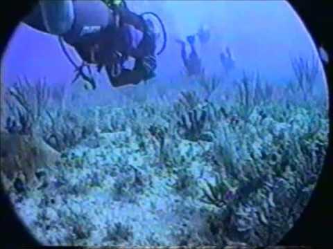 Câmera Manchete 1997 Mergulho