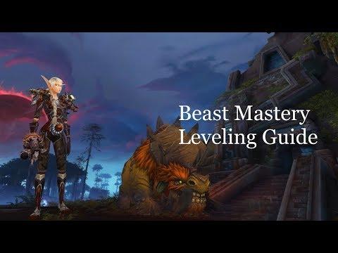 Bfa Beast Mastery Leveling Guide Youtube