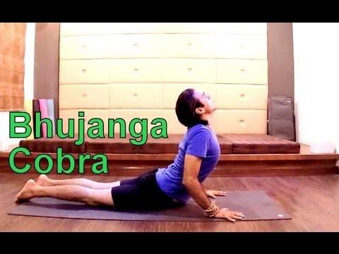 bhujangasana variations cobra pose in hatha yoga i yoga