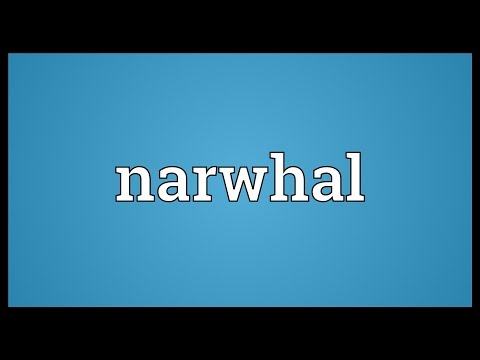 Narwhal Meaning