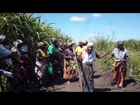 Reunion LAND Mozambique marzo 2015